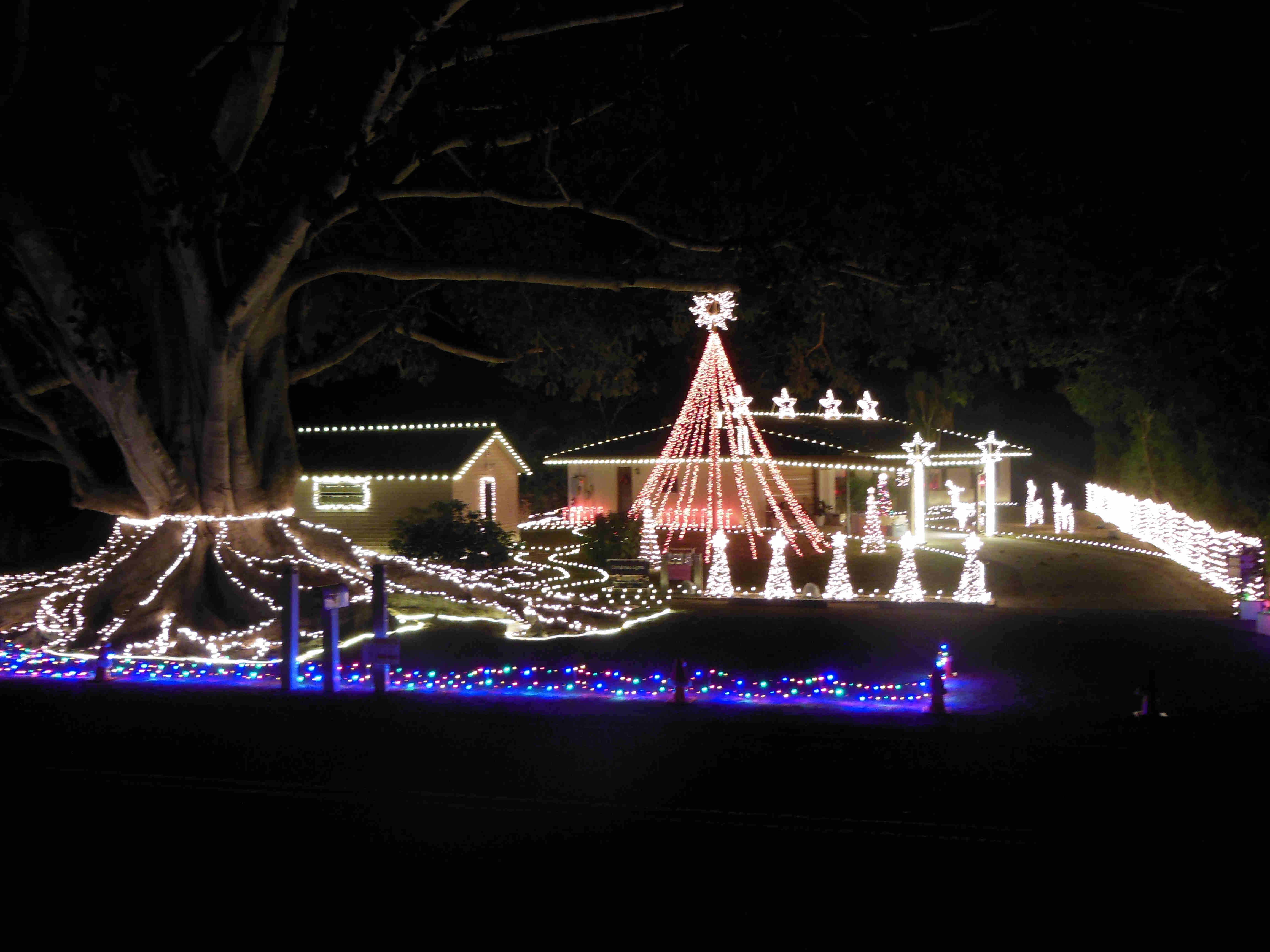 The Over The Top Christmas Lights site which is also part of the Mysore Fig Tree site.